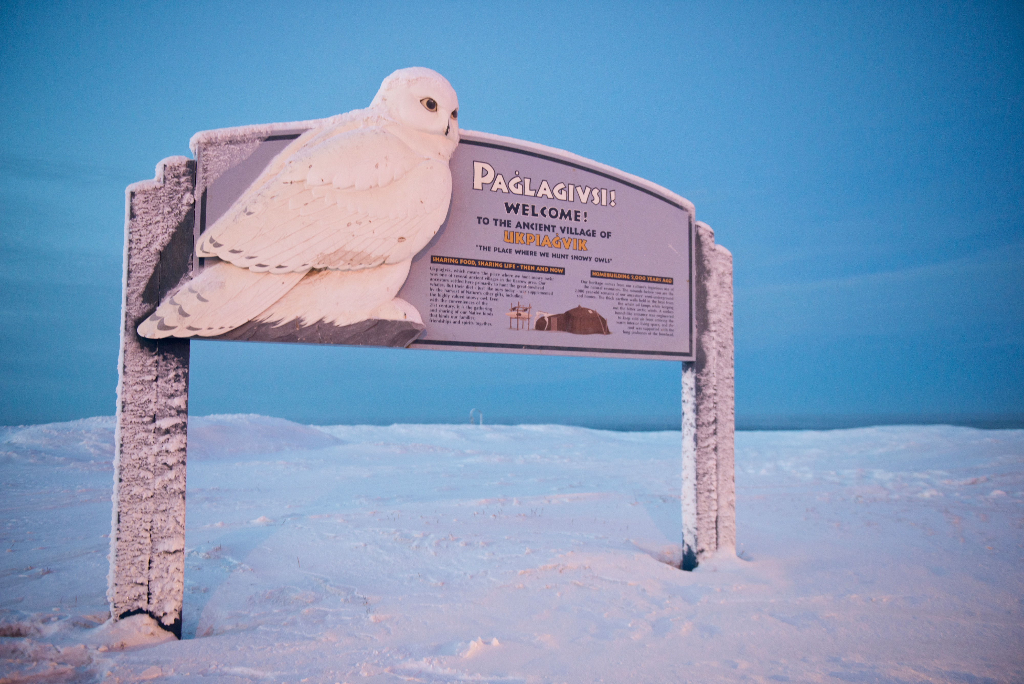 """A sign on the city's west side labels the place name Ukpiaġvik, and says the word means """"the place where we hunt snowy owls."""" Some residents say that term, not Utqiagvik, is the proper Inupiaq place name. Voters approved changing the name of the city of Barrow to Utqiagvik in October, a change which went into effect on December 1. In Alaska's northernmost city, however, residents remain divided about whether they name should've changed at all, whether the process was hurried, and whether the Utqiagvik is even the proper Inupiaq place name. Photographed on Wednesday, December 14, 2016. (Marc Lester / Alaska Dispatch News)"""