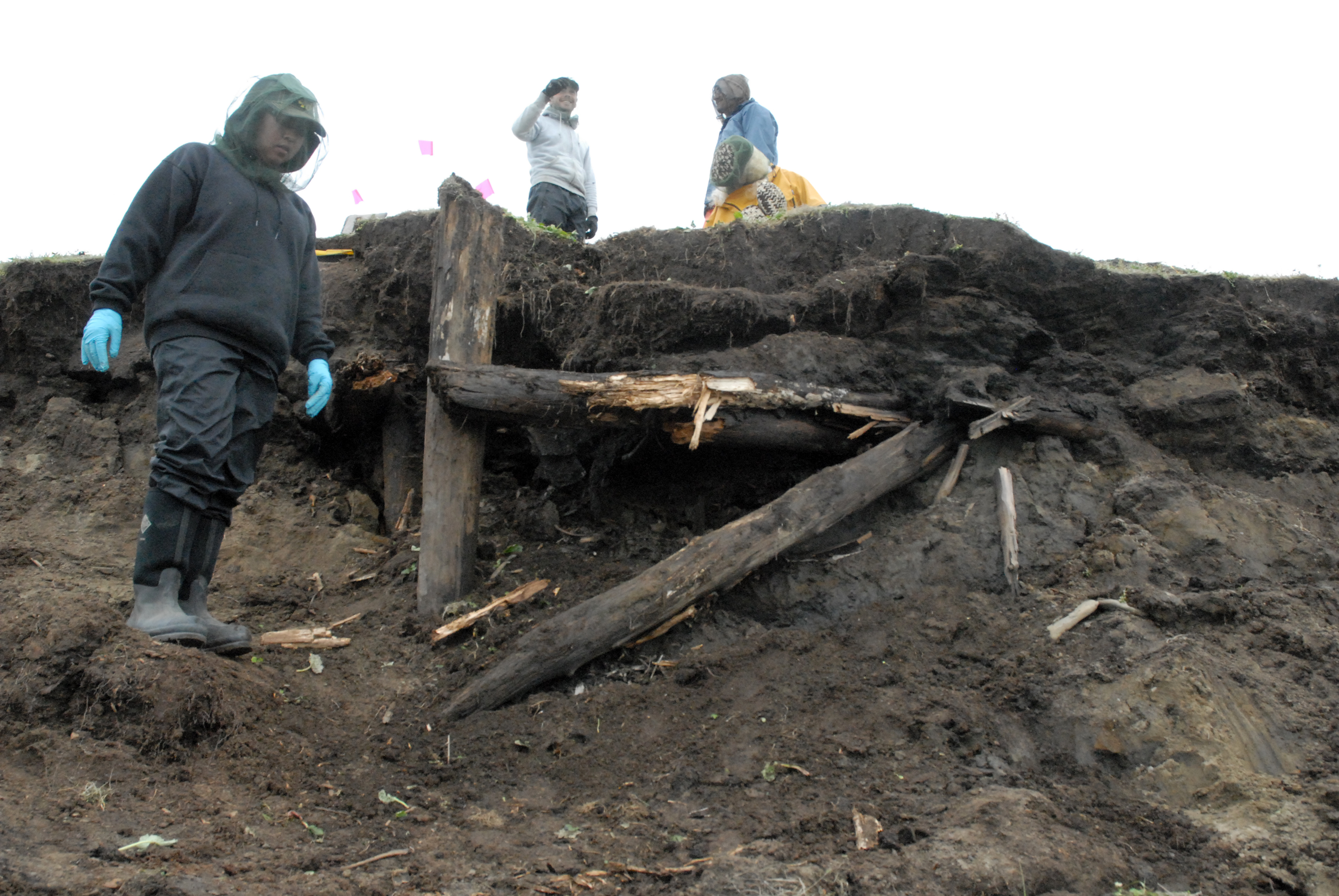 Timbers of a house are exposed at the Walakpa site southwest of Utqiaġvik following a storm in late summer of 2013. The discovery prompted renewed excavation following a hiatus since work was last conducted there in the late 1960s.