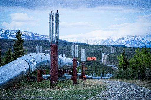 The trans-Alaska oil pipeline, seen here near Delta Junction in June 2014. (LOREN HOLMES / ADN archive 2014)