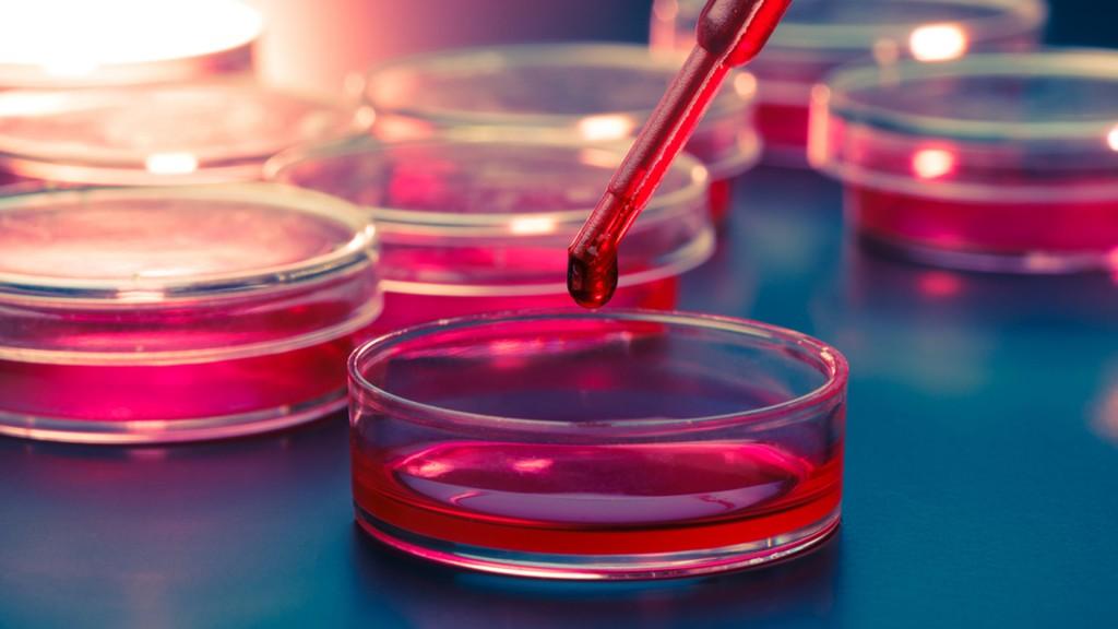 Una gota de sangre puede ayudar a detener enfermedades (Shutterstock)