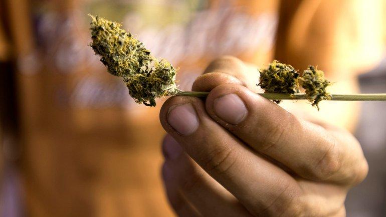 Las farmacias recibirán la sustancia en envases de 5 y 10 gramos (AP)