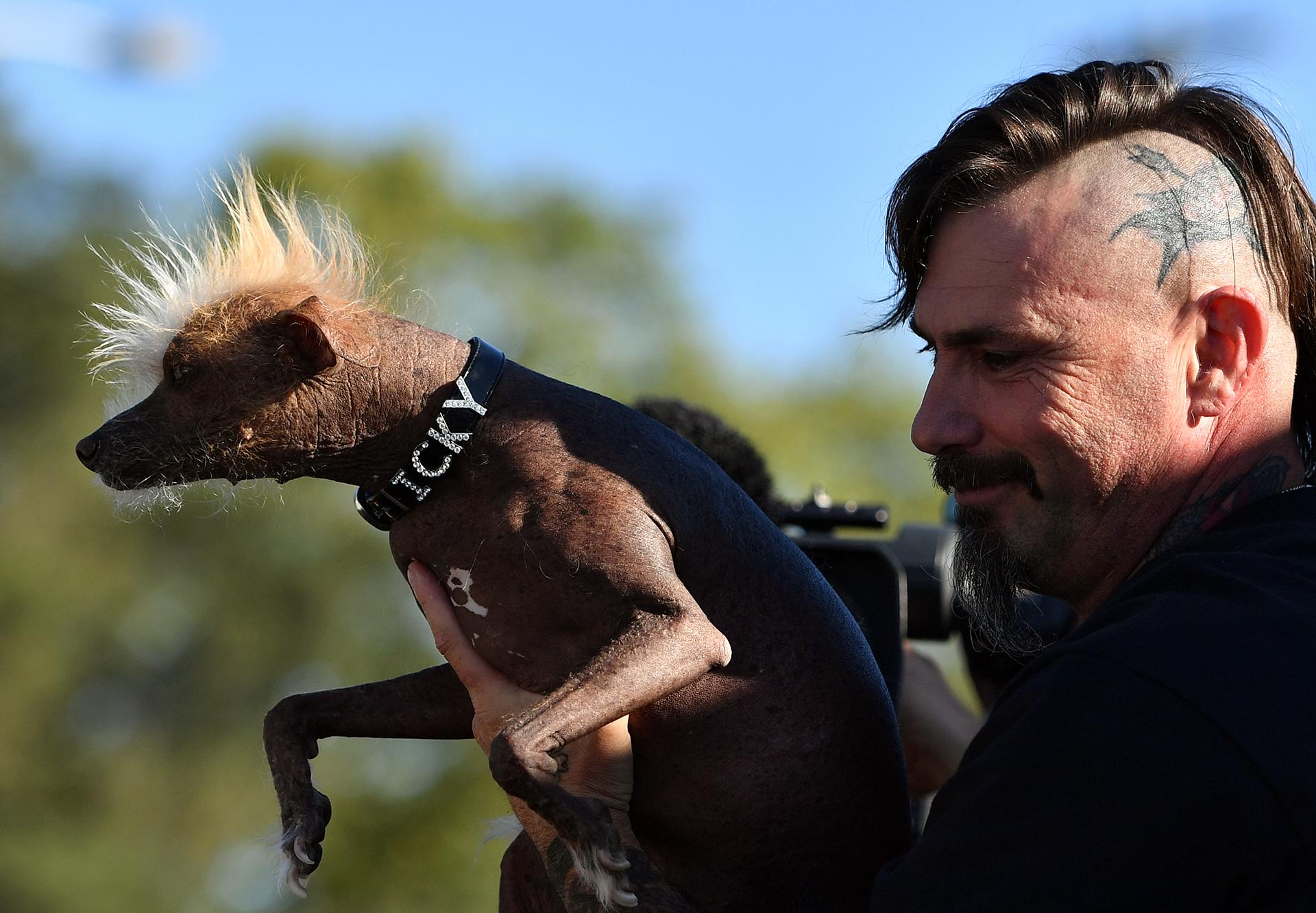Icky y su dueño, Jon Adler, también formaron parte del concurso (AFP)