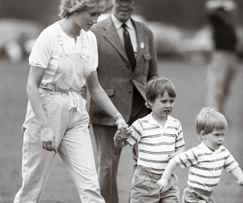 Sus amados William y Harry; ellos fueron su gran orgullo.