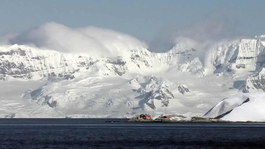 Cimino y sus colegas creen que hay varios refugios y zonas en la Antártida en donde podrían sobrevivir (Fernando Bergagna)