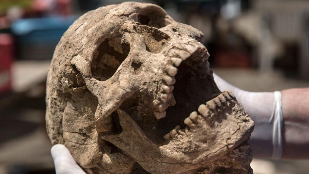 Restos humanos enterrados hace casi 3 mil años en el sur de Israel fueron hallados por arqueólogos que trabajan en el sitio hace 30 años (Leon Levy Expedition)