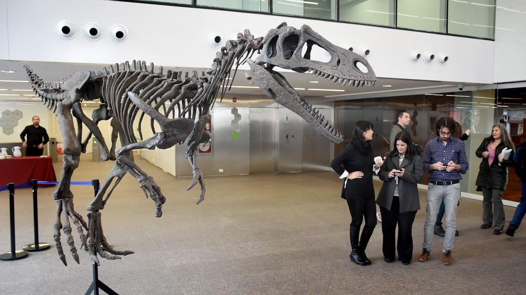 La réplica del Gualicho Shinya en Buenos Aires plantea un campo paleontológico desconocido (Nicolás Stulberg)