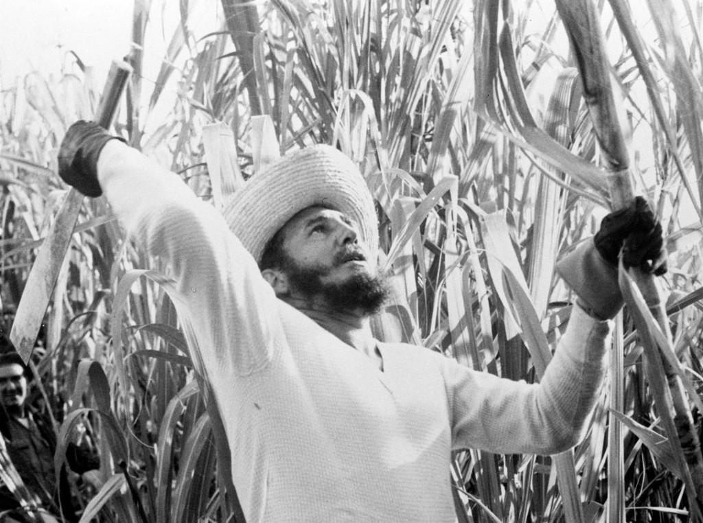 Fidel Castro, entonces Primer Ministro, trabajando en el campo el 13 de febrero de 1961 (AP)