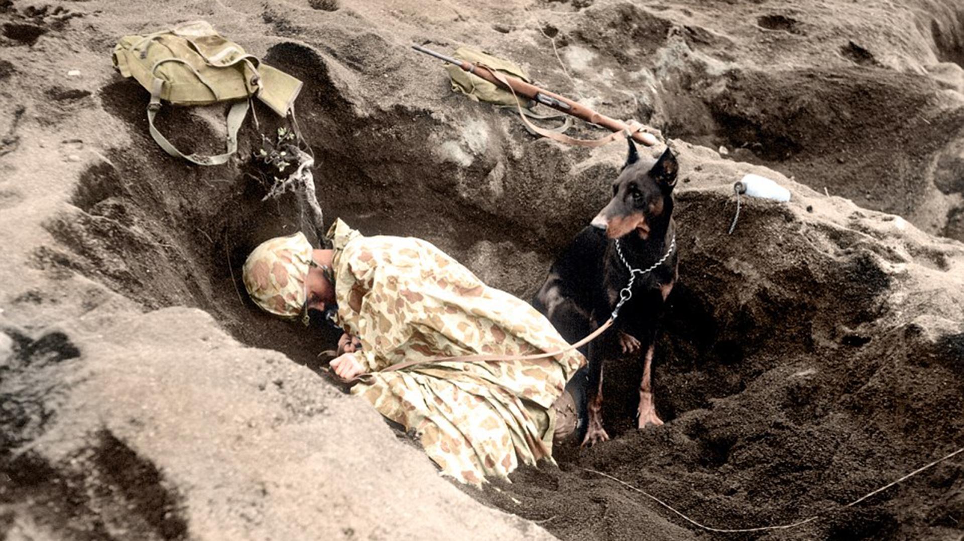 El soldado de primera clase Rez P. Hester duerme mientras su perro Butch hace guardia en Iwo Jima