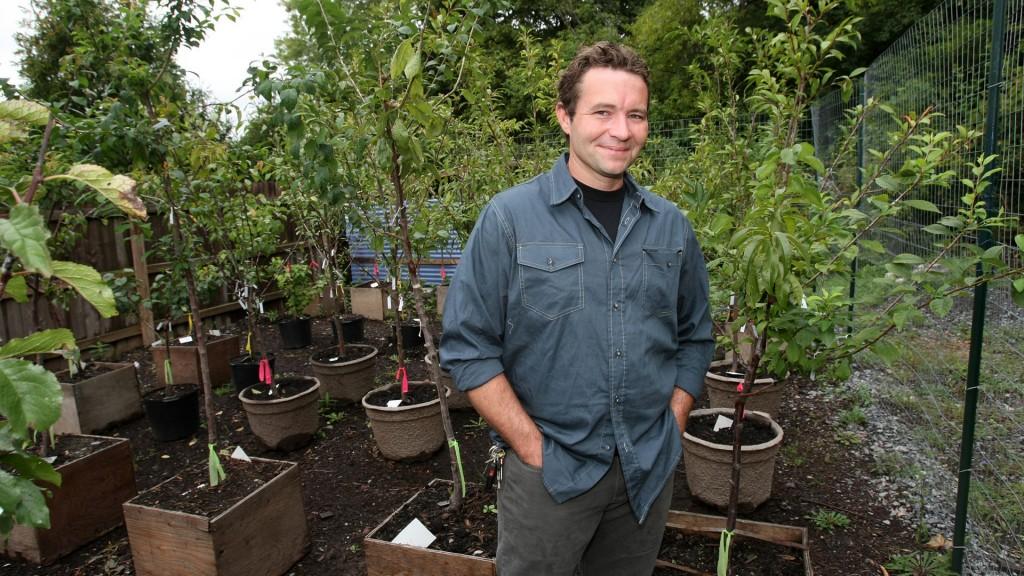 """El increíble """"árbol Frankenstein"""", del que crecen 40 tipos de frutas -  Infobae"""