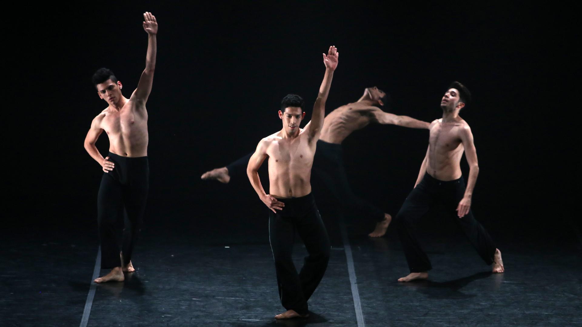 Este año, los fondos recaudados a través de las entradas a la gala, serán destinados al equipamiento de una sala de preparación física para el entrenamiento de los bailarines y al otorgamiento de nuevas becas de danza para jóvenes talentos