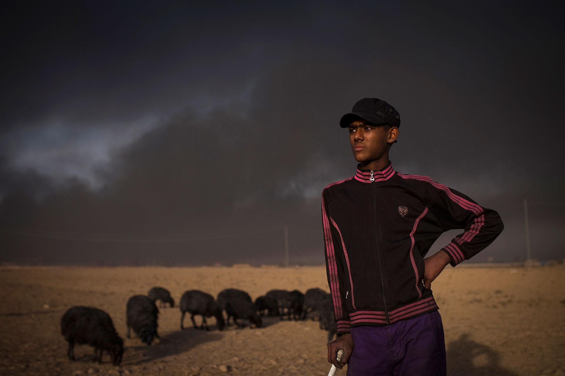 Un joven pastor cerca de Qayyarah (AFP)