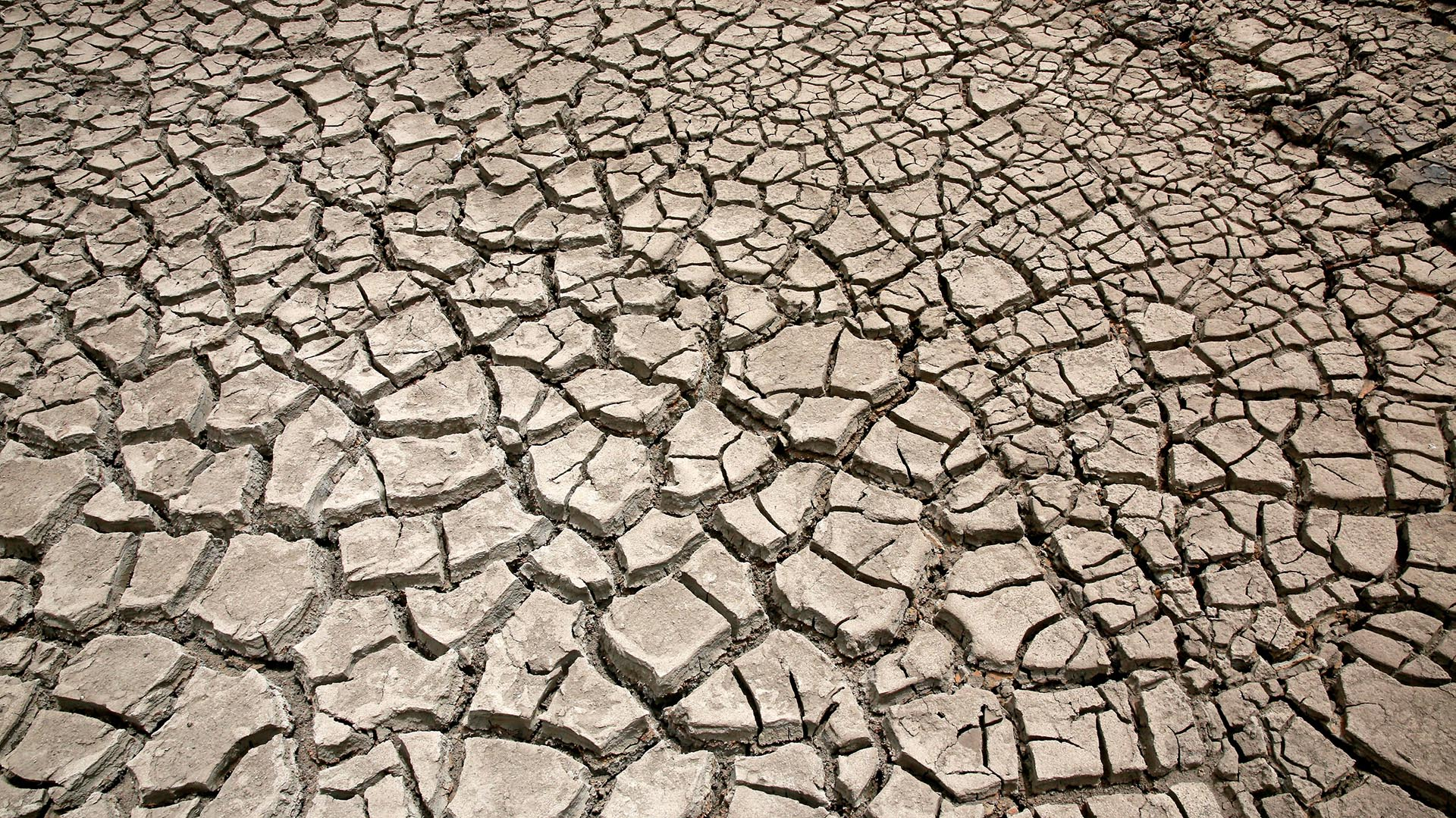 """""""Mi recomendación es que seamos responsables (sobre) cómo cuidar el agua. Se presentó este problema por el cambio climático"""", señaló Morales (Reuters)"""
