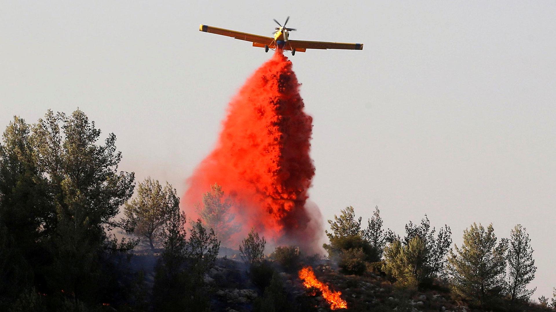 Este jueves arribaron al país aviones de Grecia y Chipre para ayudar a extinguir los fuegos (Reuters)
