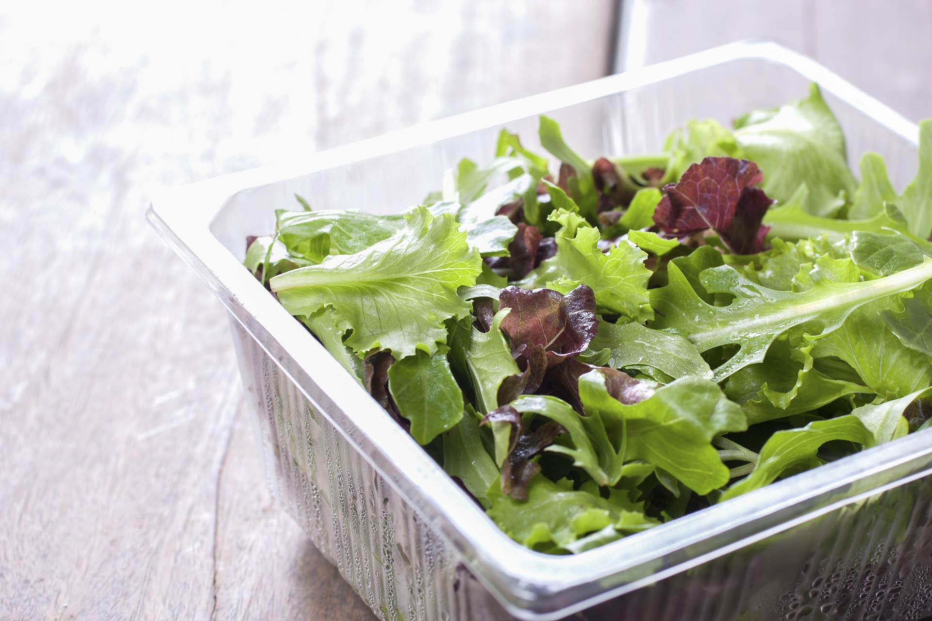 Dieta detox despues del verano que estacion viene