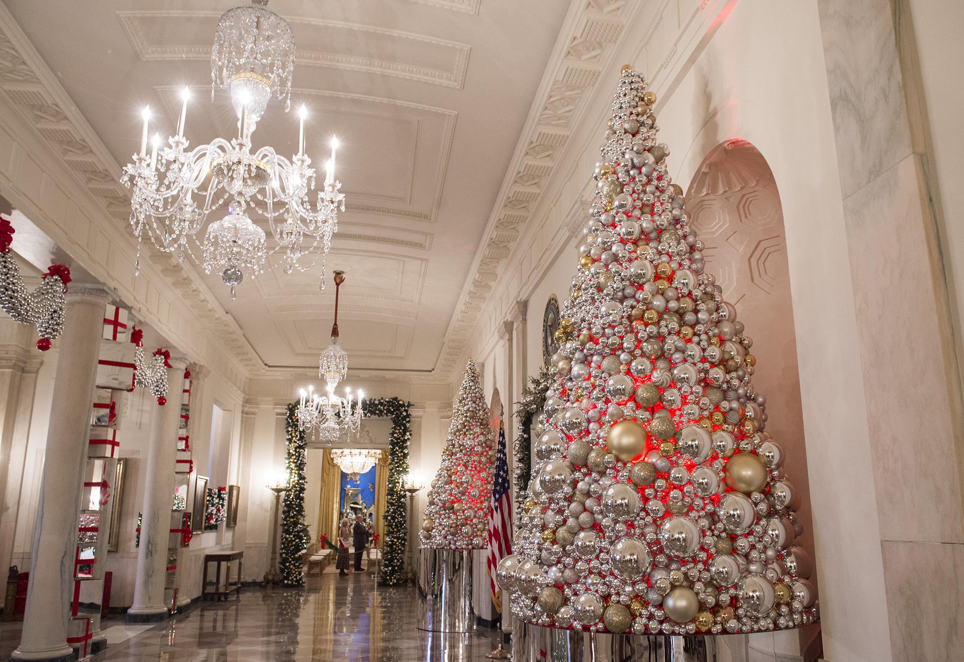 Algunos de los árboles que se pueden encontrar por los pasillos y salones de la residencia oficial