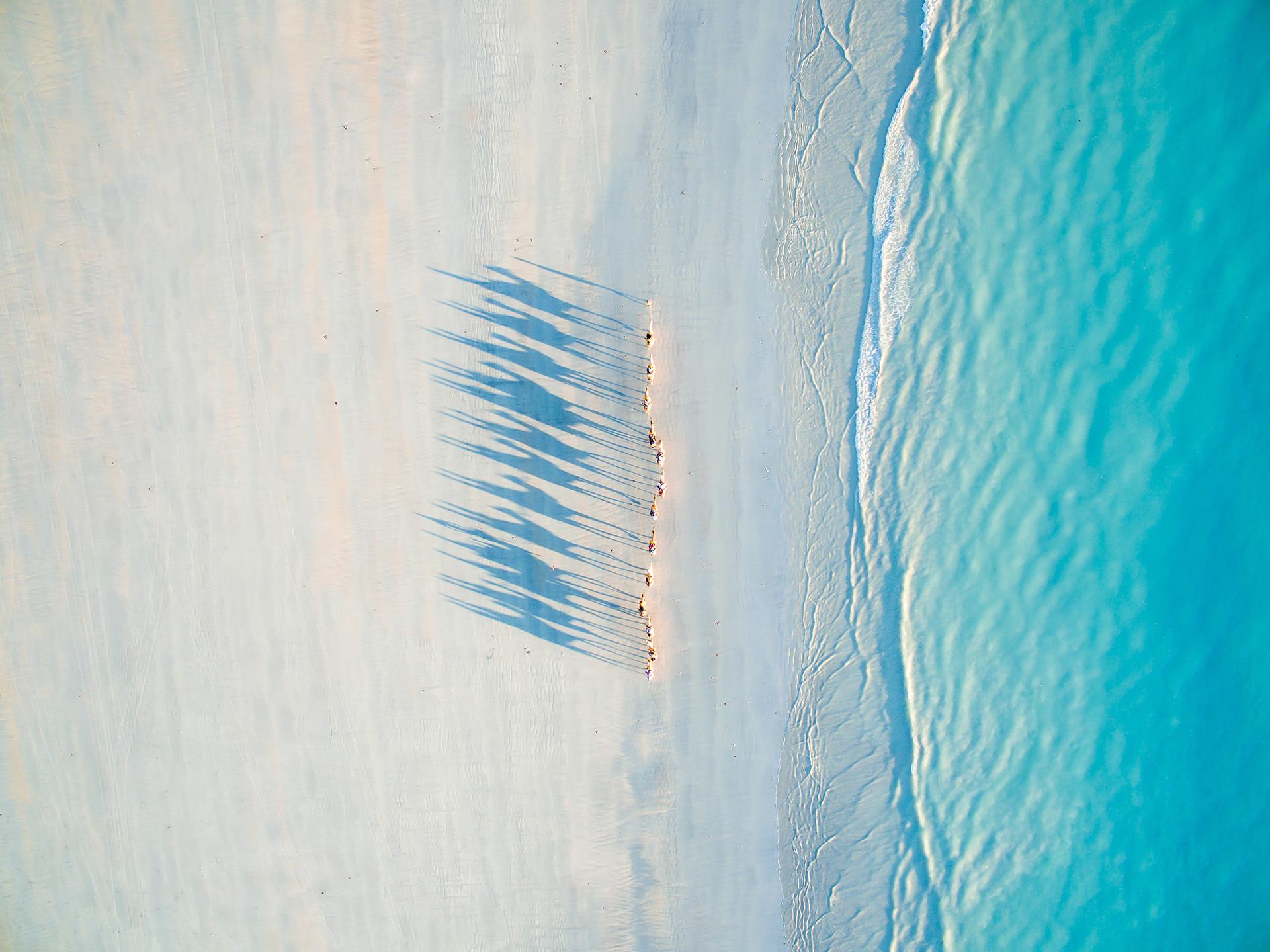Camellos en Cable beach, Australia Occidental: segundo lugar en Turismo (Todd Kennedy)