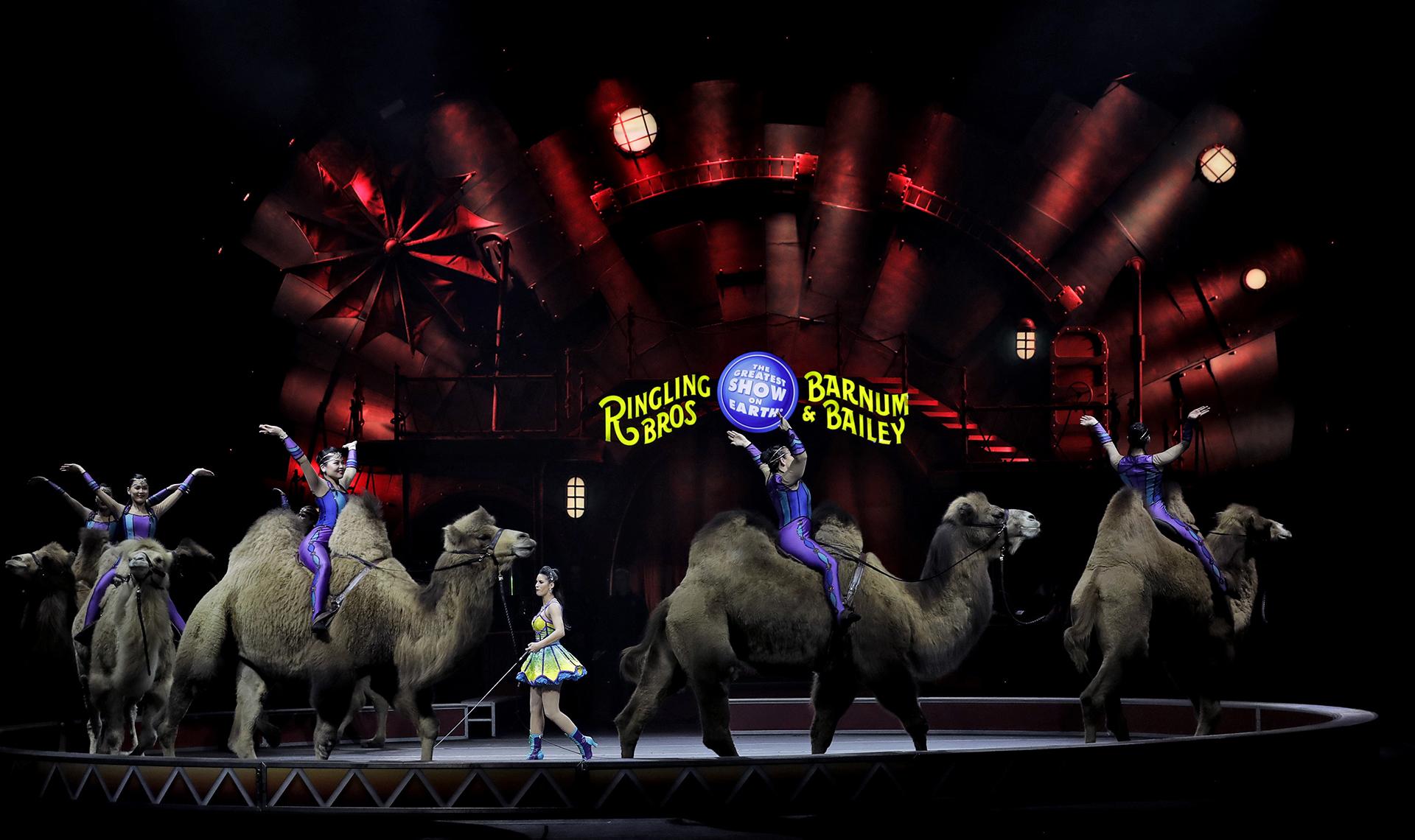 Organizaciones de defensa de los derechos de los animales, como PETA, han presionando a los circos en los últimos años(AP)