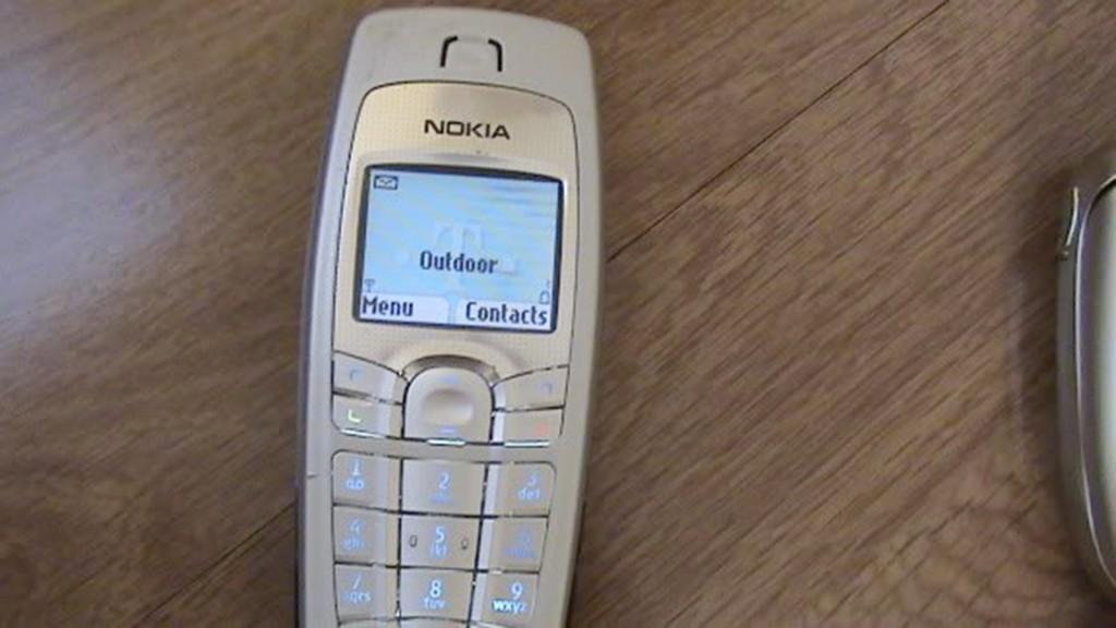 celulares SF 15 Nokia 6010