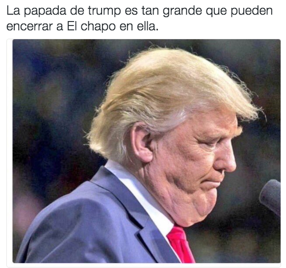 meme-chapo-6