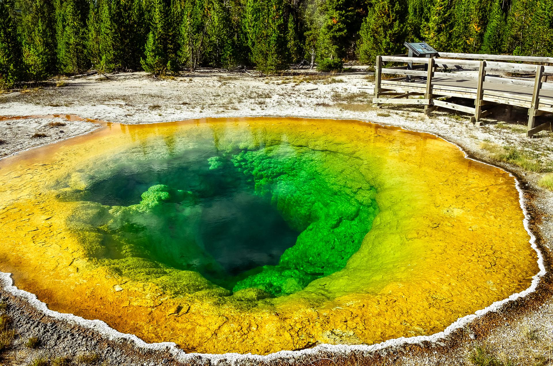 Gran parte de la fama de Yellowstone proviene de su increíble actividad geotérmica. Más de 200 géiseres y 10.000 fuentes caliente llaman a este parque su hogar