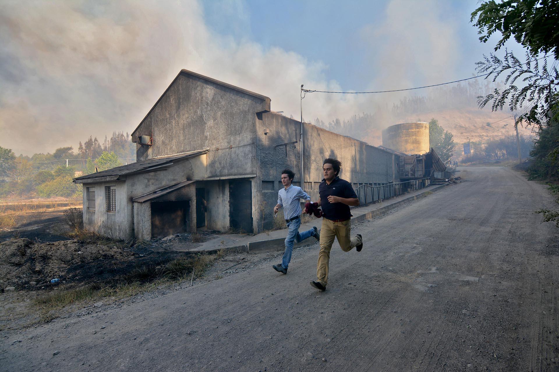 Los incendios afectan zonas rurales donde viven, en su mayoría, agricultores y criadores de ganado. Las grandes empresas forestales también se han visto afectadas, principalmente en la región del Maule, donde el fuego consumió más de 160.000 hectáreas, muchas de ellas de pinos y eucaliptos