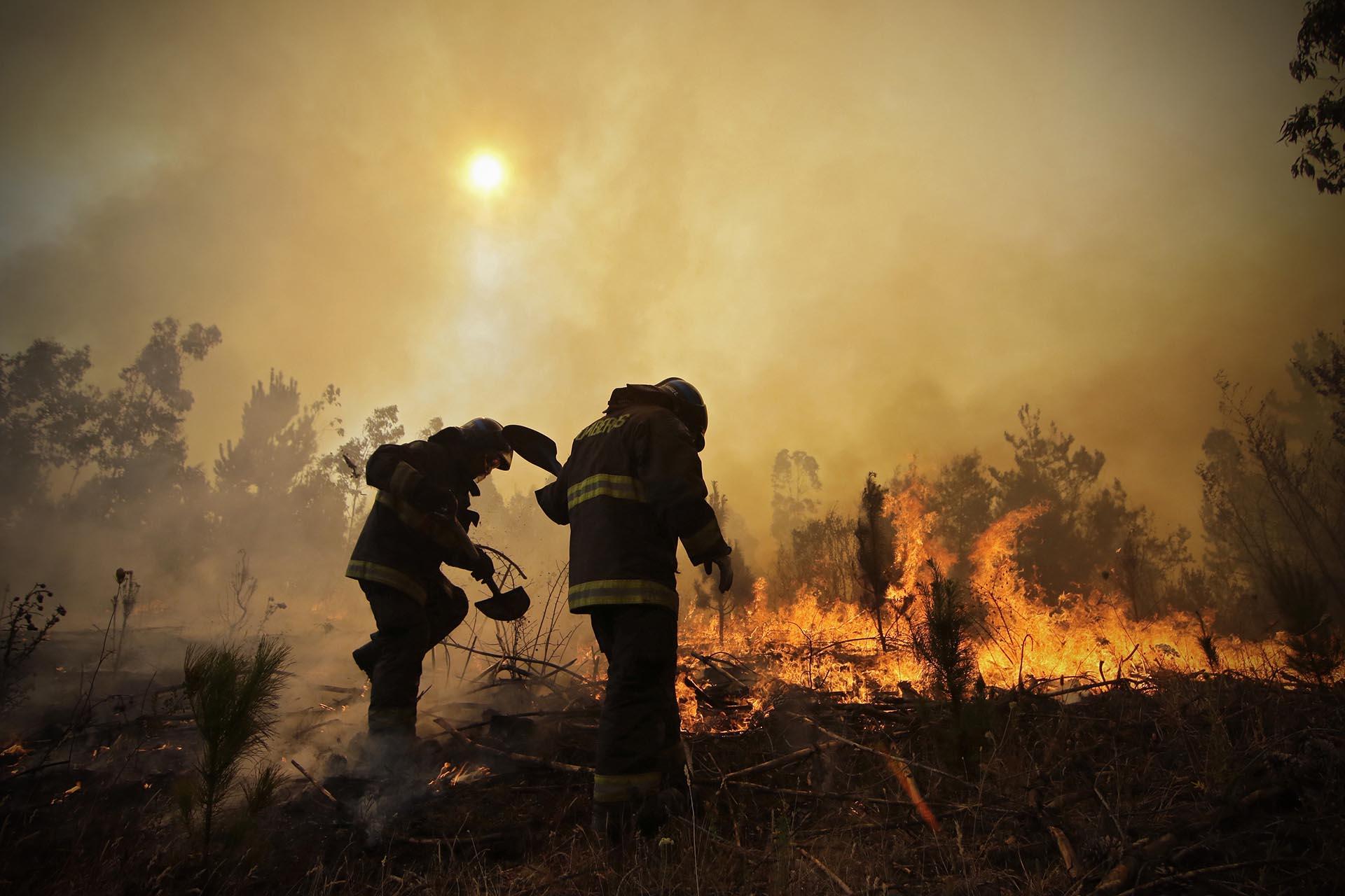 Un bombero perdió la vida este jueves a causa de los devastadores incendios que asolan el centro-sur de Chile, con lo que ya son diez los fallecidos en la mayor catástrofe forestal de la historia del país