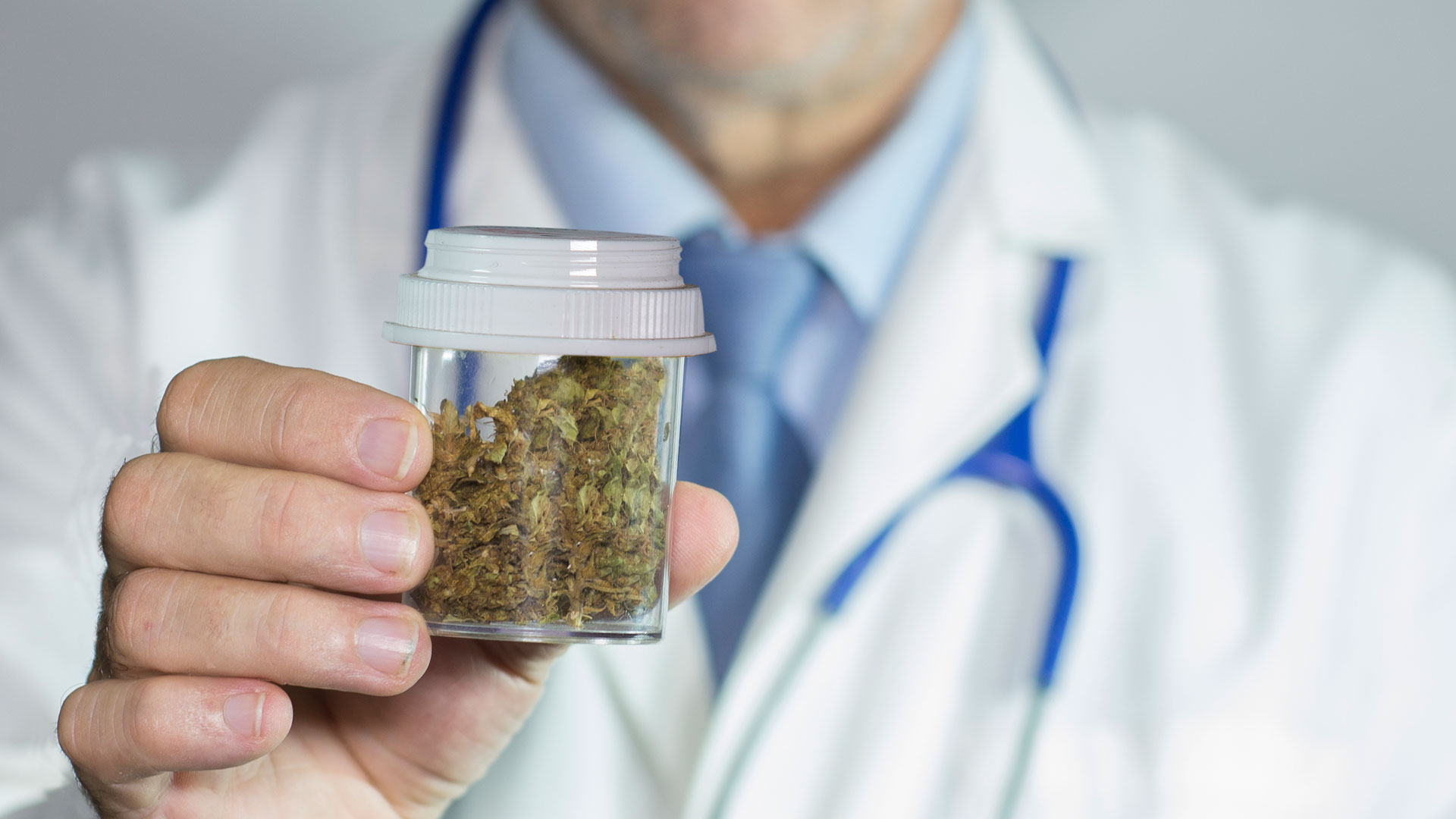 El cannabis medicinal se utiliza como una opción terapéutica para distintas enfermedades (iStock)