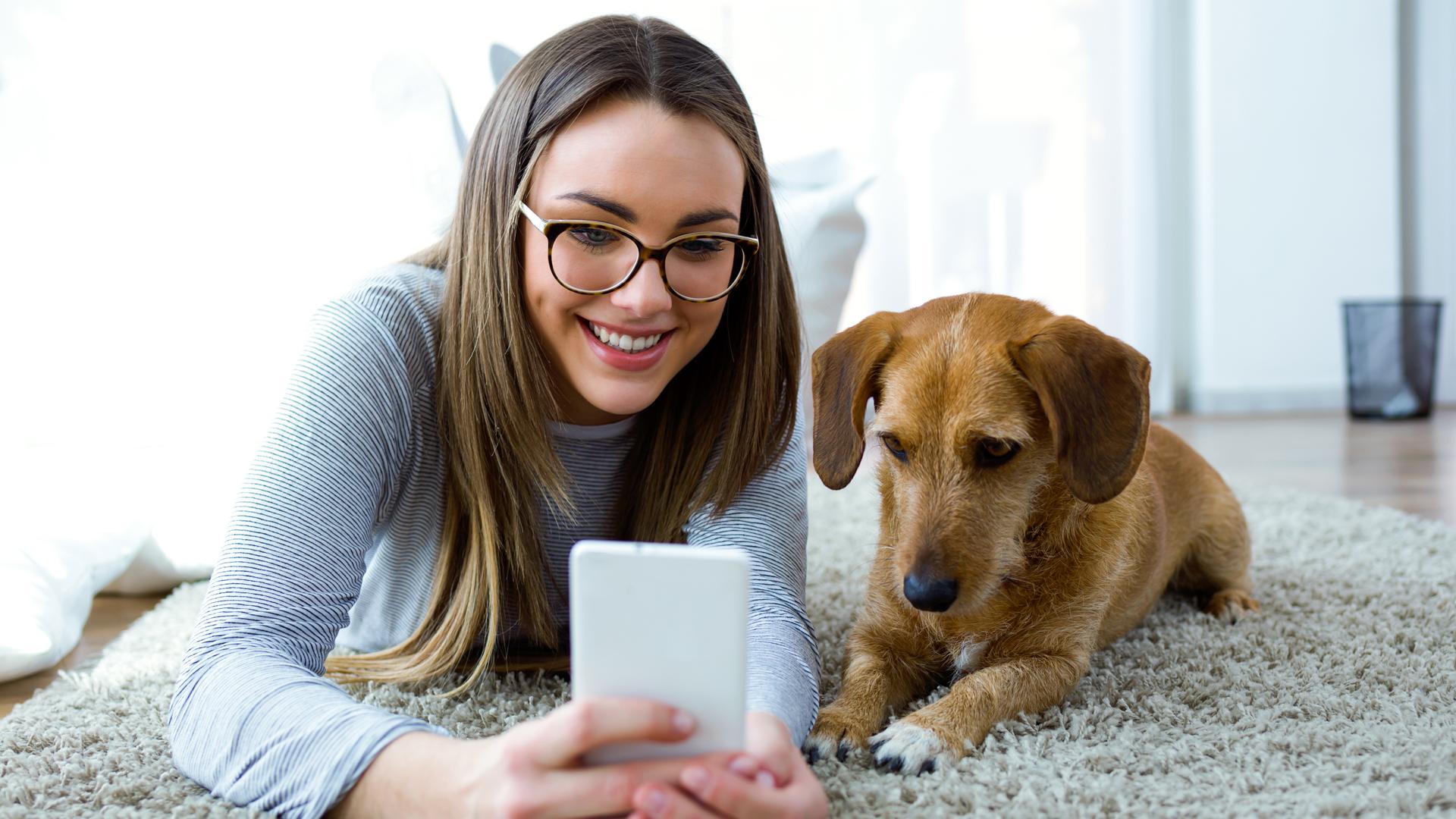 Los perros domésticos pueden ser muy amigables con los seres humanos