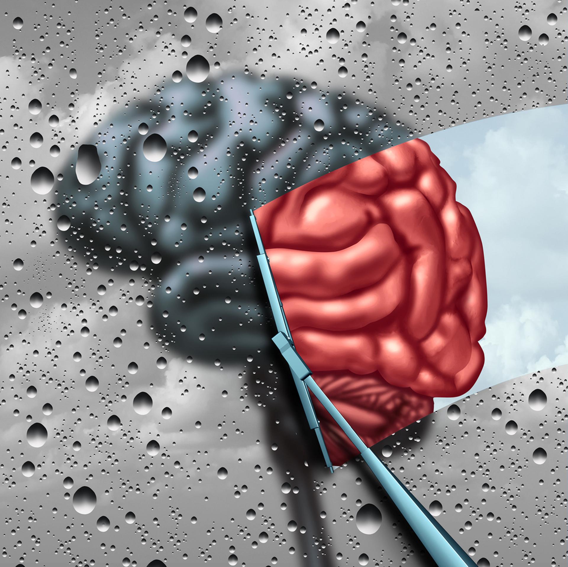 Los nuevos estudios están despejando mitos y viejos errores en el tratamiento de la memoria (iStock)