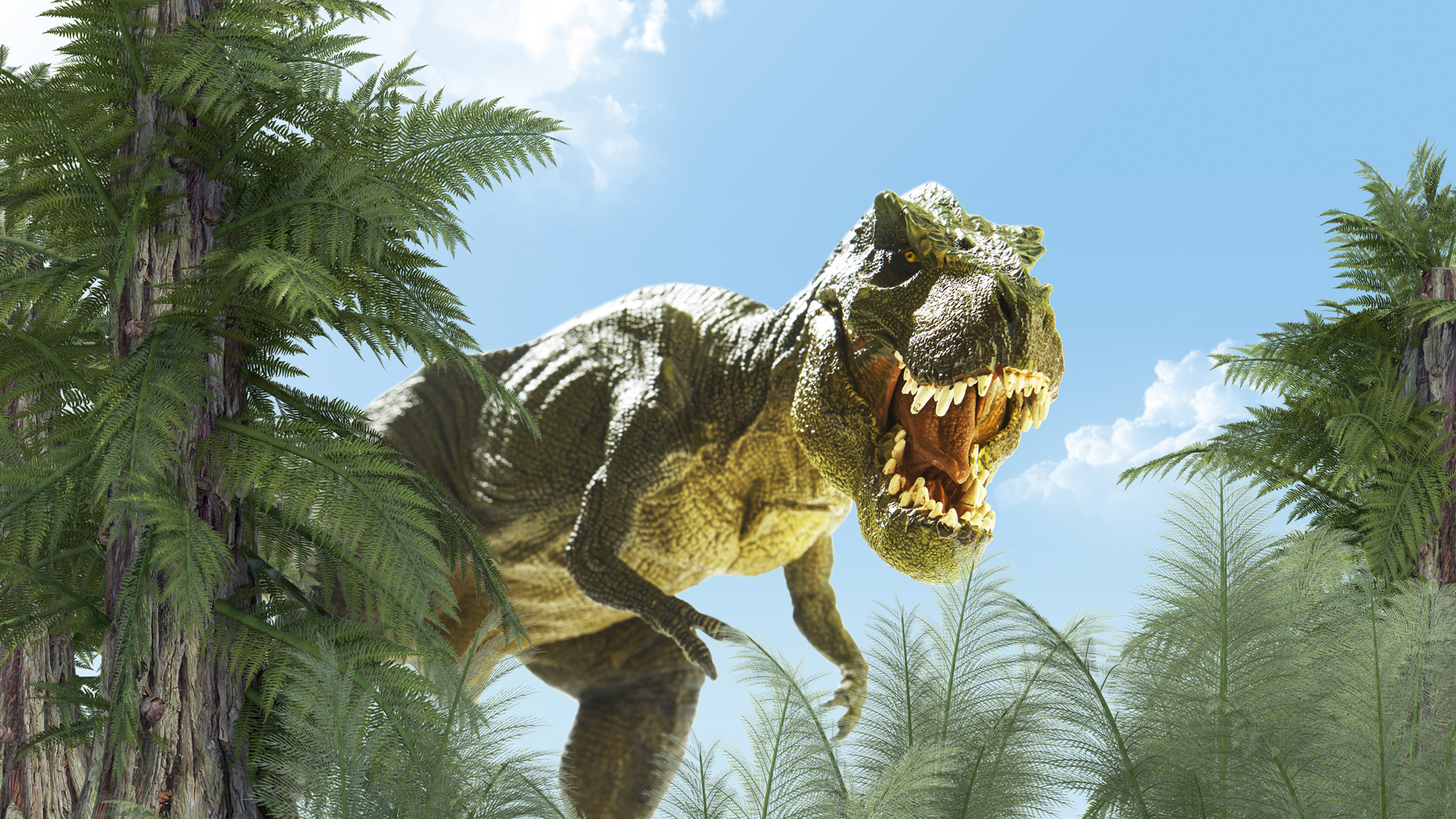 Sexo Jurasico Como Tenian Relaciones Los Tiranosaurios Rex Infobae Un dinosaurio en nueva york online. https www infobae com salud ciencia 2017 04 06 sexo jurasico como tenian relaciones los tiranosaurios rex