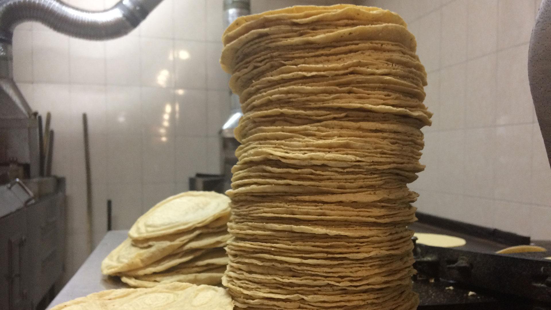 La tortilla es el principal alimento de los mexicanos (Foto: Archivo)