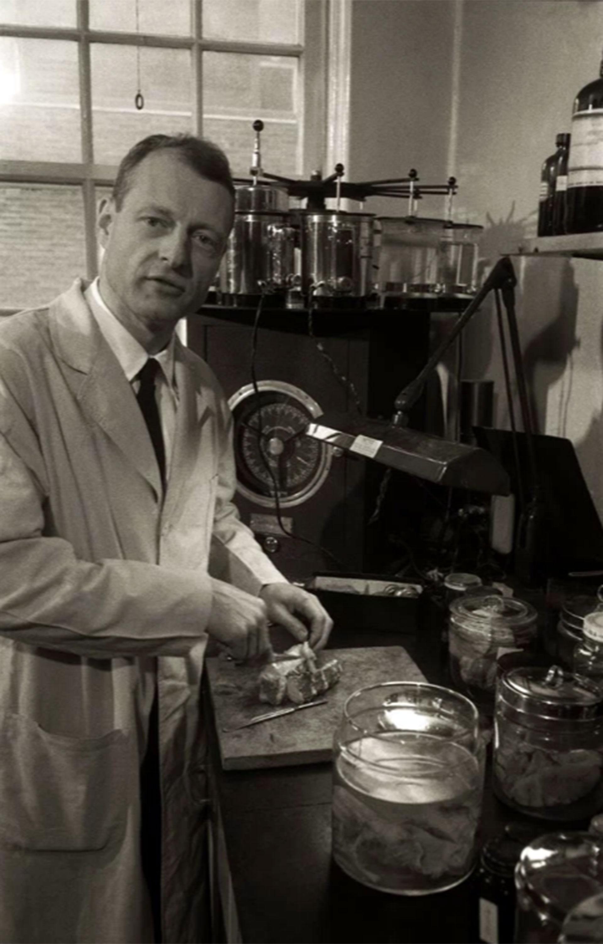 El doctor Thomas Harvey muestra a Ralph Morse cómo disecciona lo que sería el cerebro de Albert Einstein para su estudio (Ralph Morse -Life Magazine- Getty)