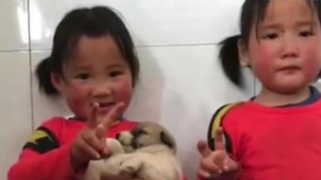 La pequeña rescatista ysu hermana gemela muestran a su nuevo mejor amigo (peoples daily)
