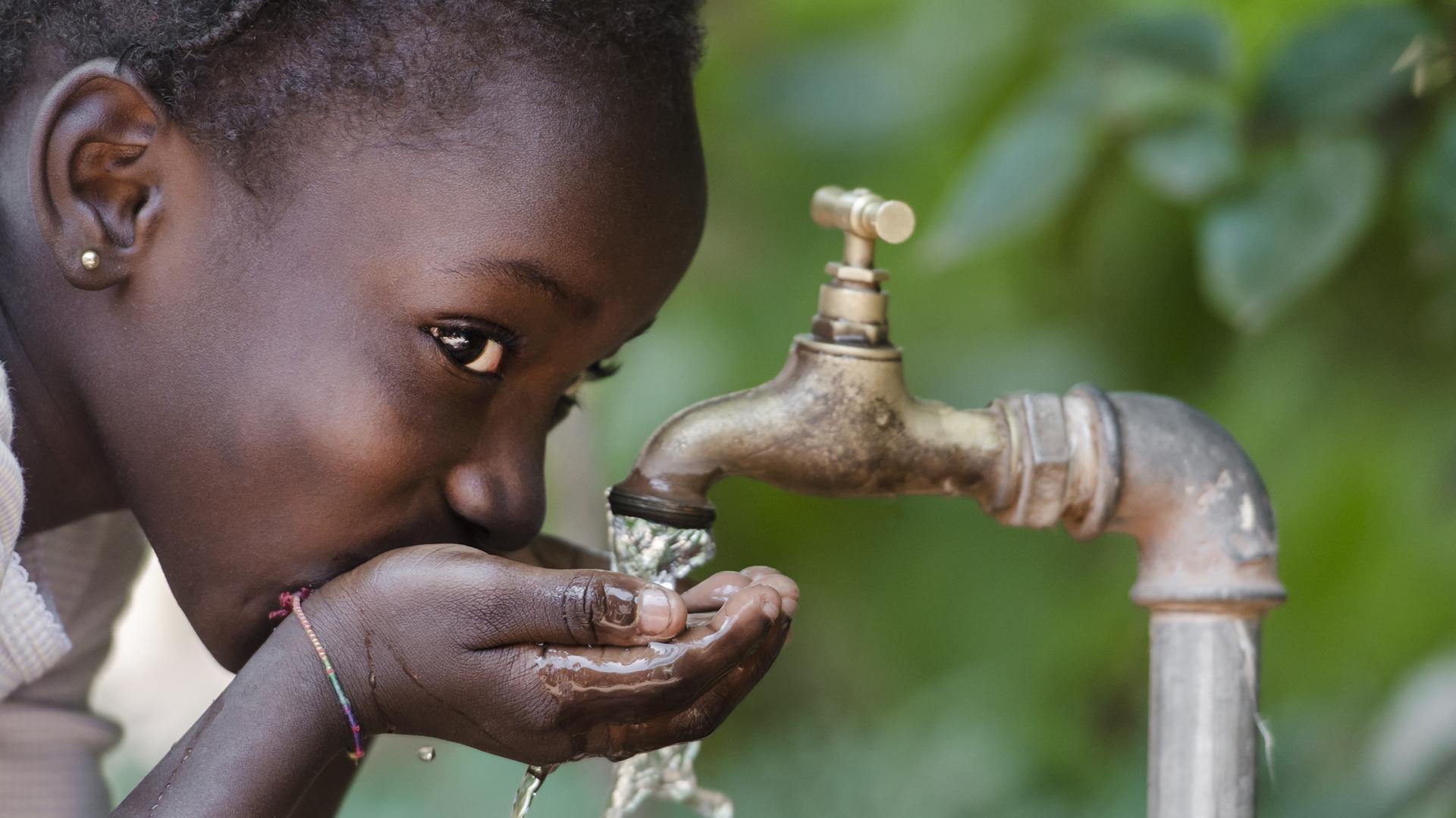 Argelia es el primer país del África continental que consigue erradicar la malaria (iStock)
