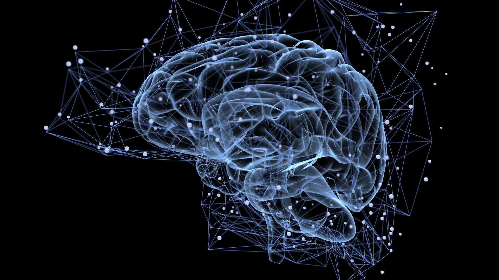Un neurotransmisor cerebral con estimulación eléctrica sincronizada puede ser positivo para el tratamiento de la memoria (iStock)