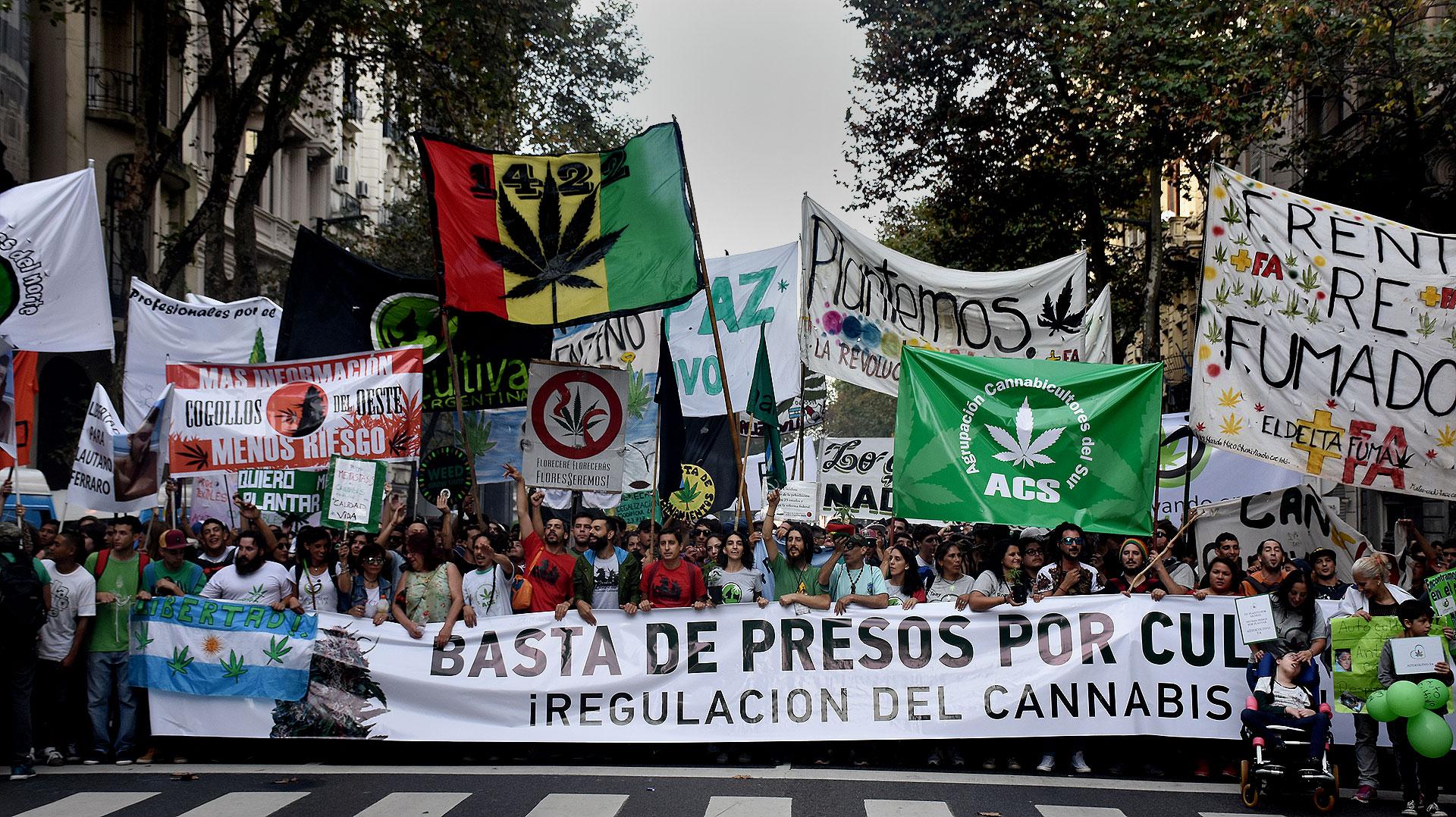 Una multitud marchó al Congreso para pedir la legalización del autocultivo  de cannabis - Infobae