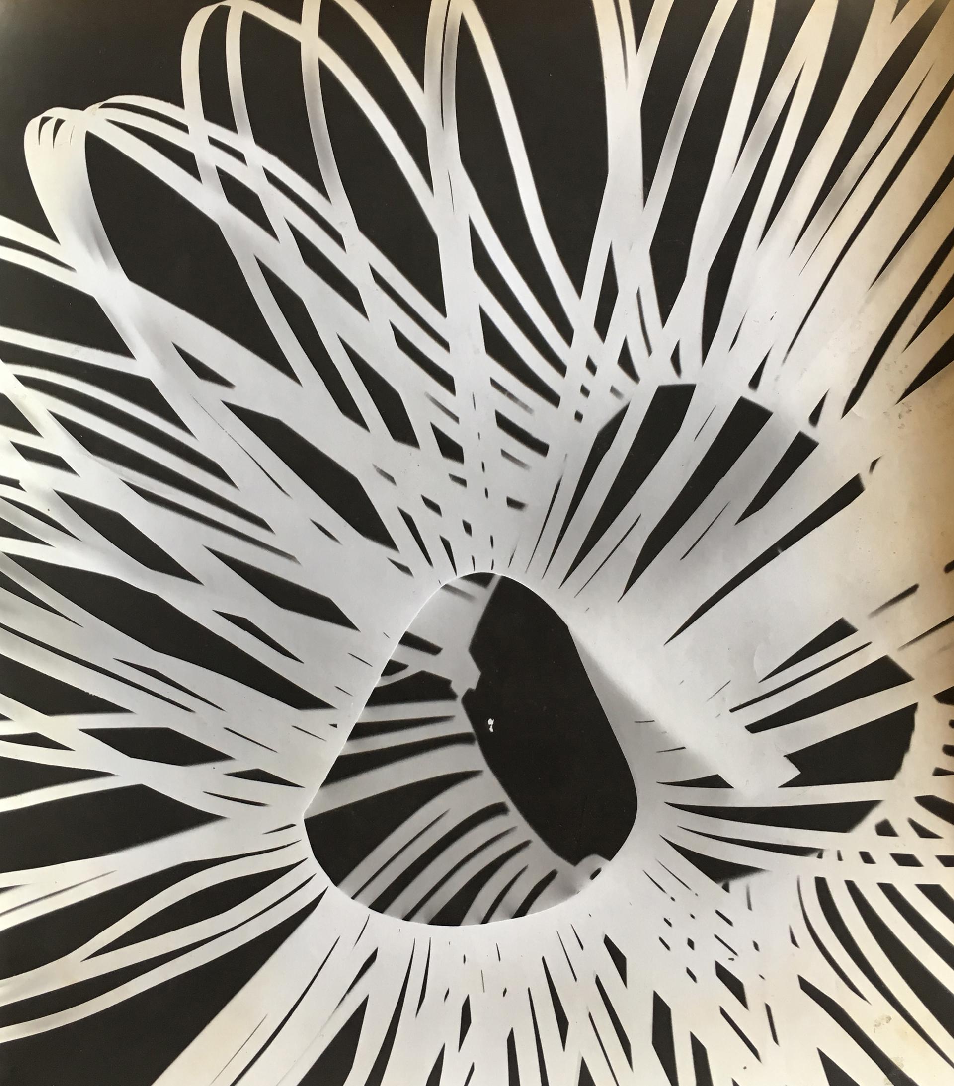 Galería: Aldo de Sousa | Buenos Aires. Artista: Jorge Pereira. Título: Sin título. Técnica: Fotograma. Año: 1964. Medidas: 33 x 29 cm.