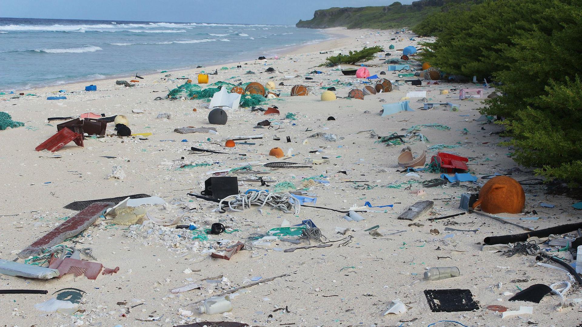 Residuos plásticos en East Beach, en la isla Henderson (Foto: Jennifer Lavers)
