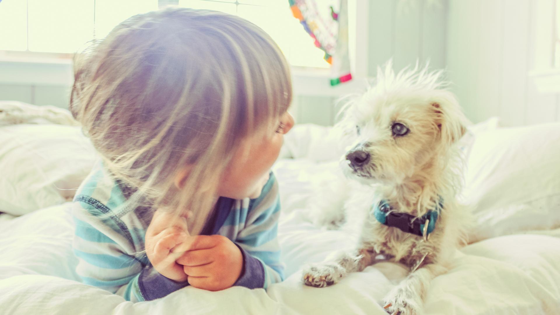 El experimento de Tasha Sturm se baso en analizar la huella de su hijo luego de todo un día escolar y de juegos con el perro de la familia (iStock)