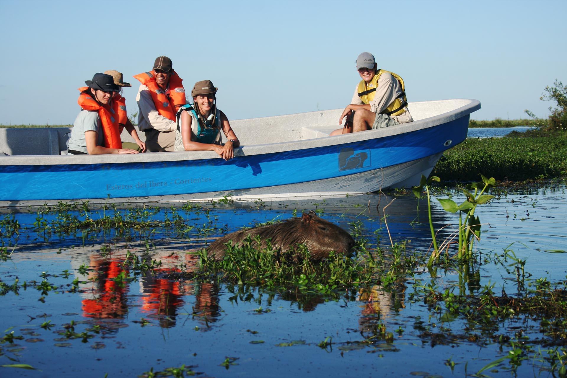 """Lagunas, suelos flotantes de vegetación y un bote que espera para envolverse en paisajes de otro mundo. Iberá quiere decir """"agua brillante"""" en guaraní. Es uno de los grandes complejos de humedales de agua dulce del planeta"""