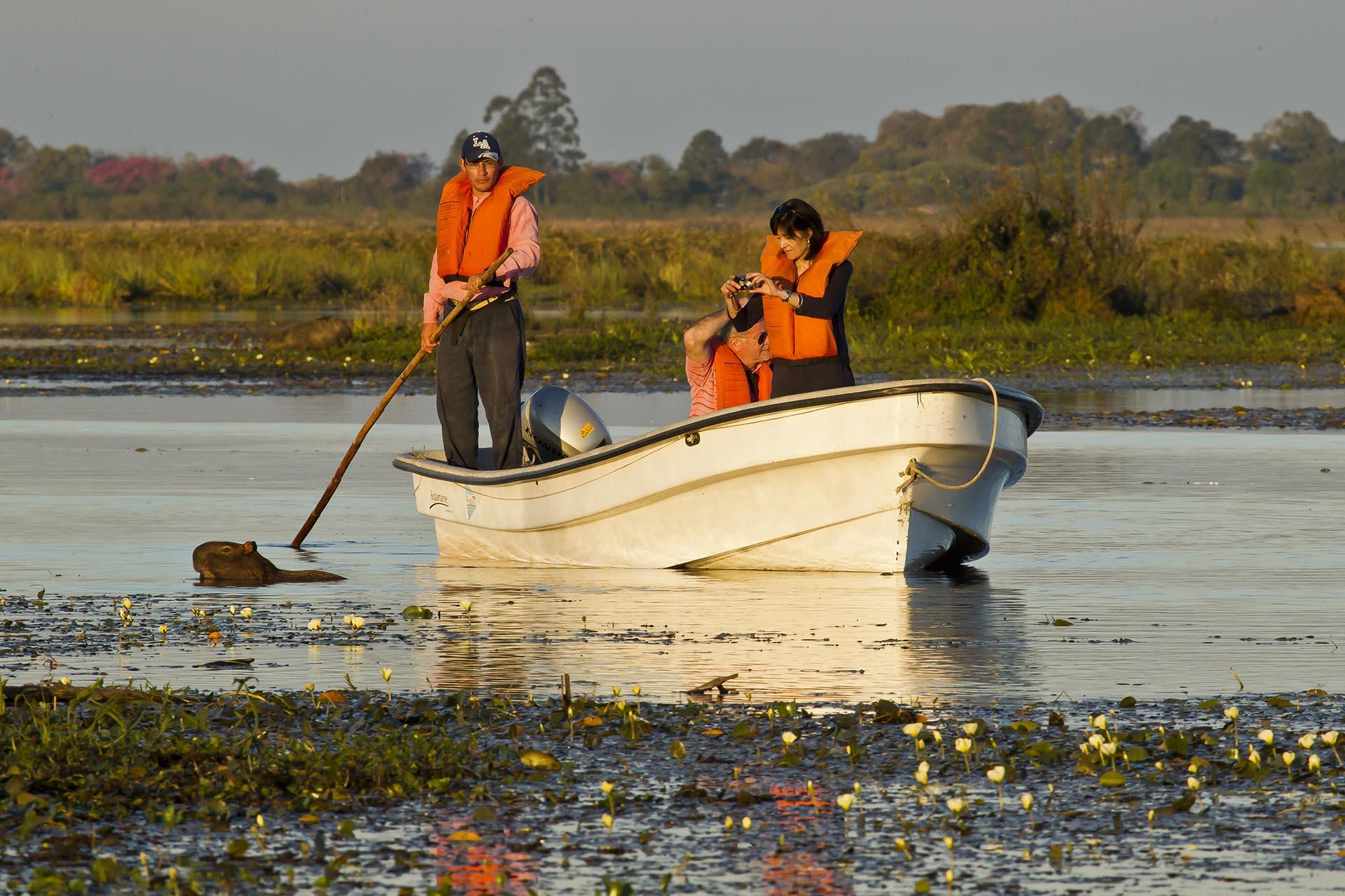 Una de sus lagunas más importantes es la Iberá, con 5500 hectáreas. Al navegar por ella y sus canales, se ve la curiosa formación de embalsados y de plantas acuáticas, además de los animales en su hábitat natural (las primeras horas de la mañana y del atardecer despliegan más actividad, así que son los mejores momentos para observarlos)