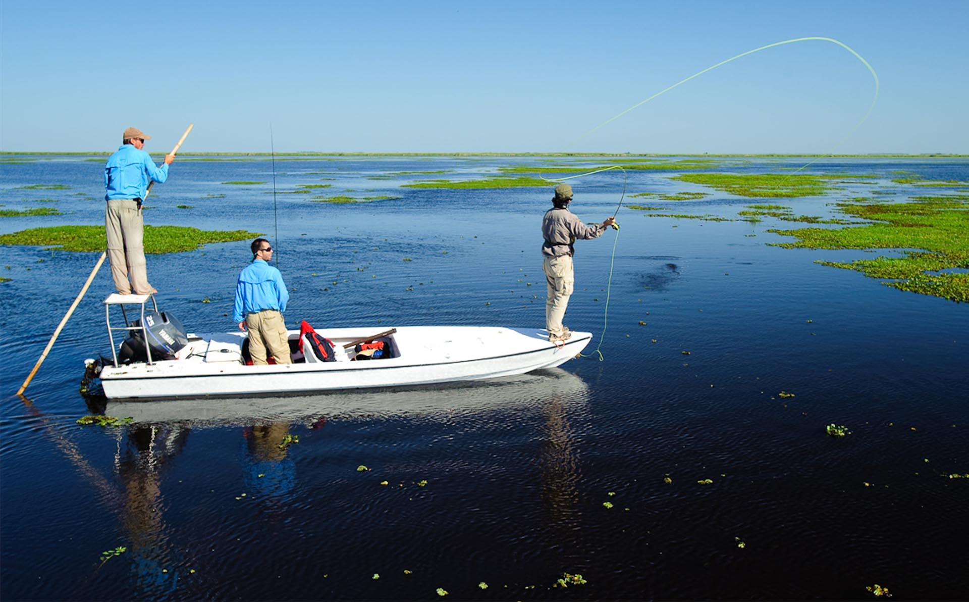Ubicado al noreste de Argentina, es un refugio de la naturaleza enclavado en el corazón de la provincia de Corrientes, a donde se puede llegar desde diferentes puntos de acceso, como Mercedes, Colonia C. Pellegrini, Ituzaingó, Concepción y Loreto, entre otros