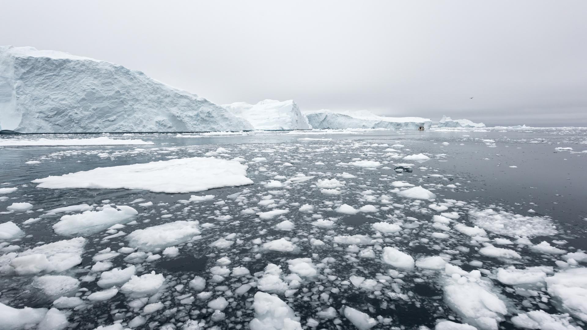 La Antártida sufre por el calentamiento global al igual que el Amazonas ( Istock)