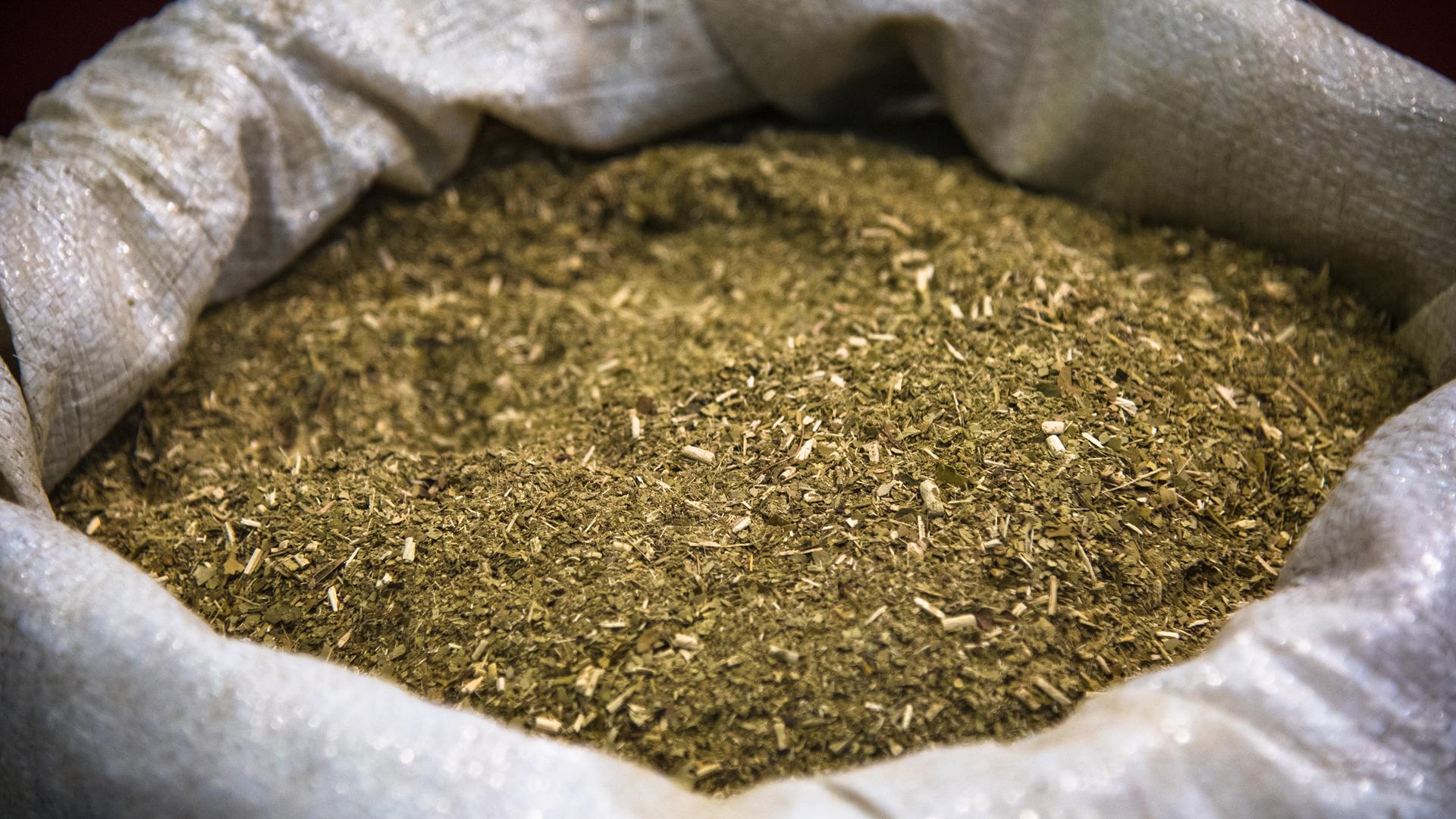 La yerba mate está compuesta por hoja fina, hoja gruesa, hoja impalpable y palo (iStock)
