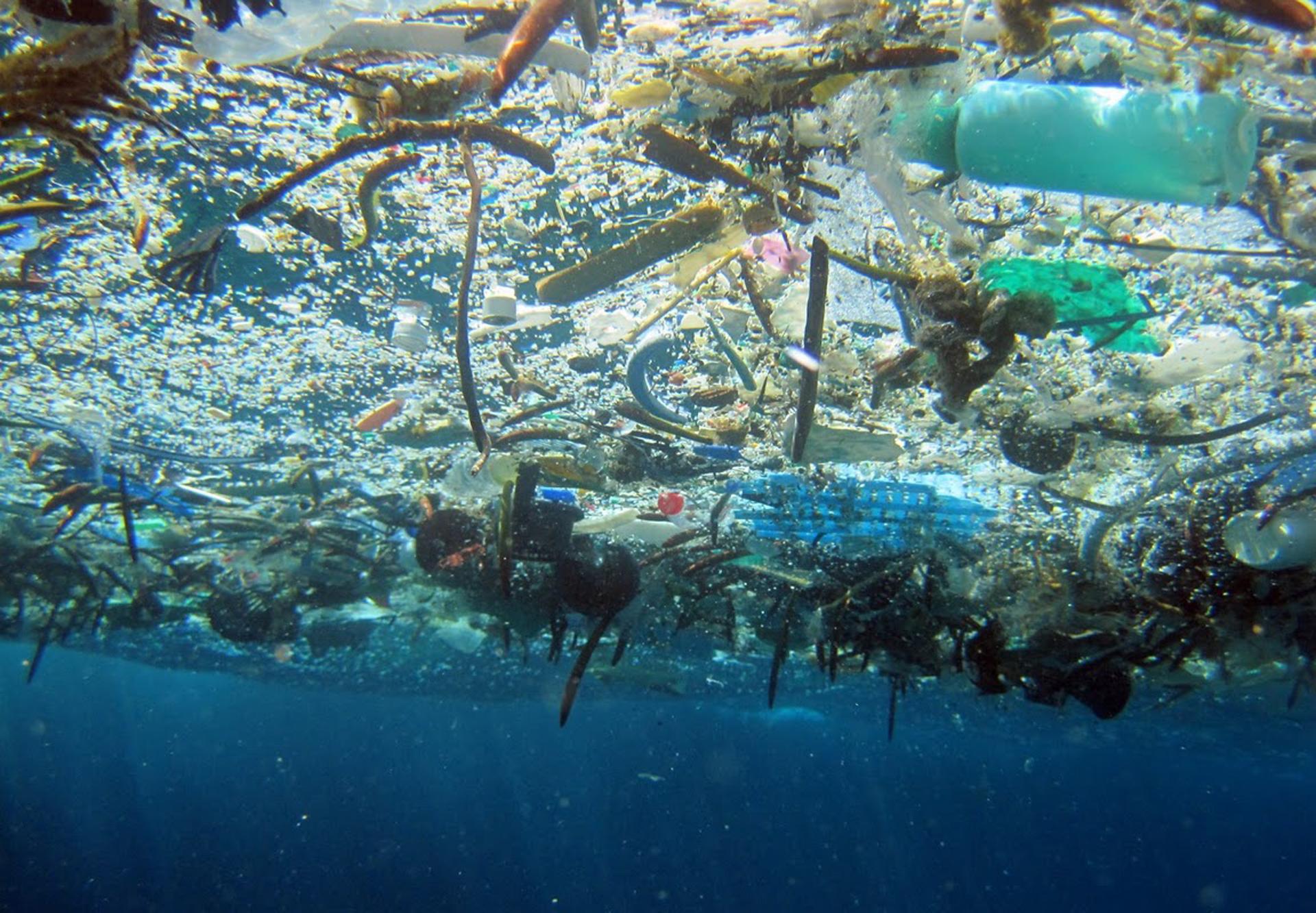 Resultado de imagen para muerte de los oceanos