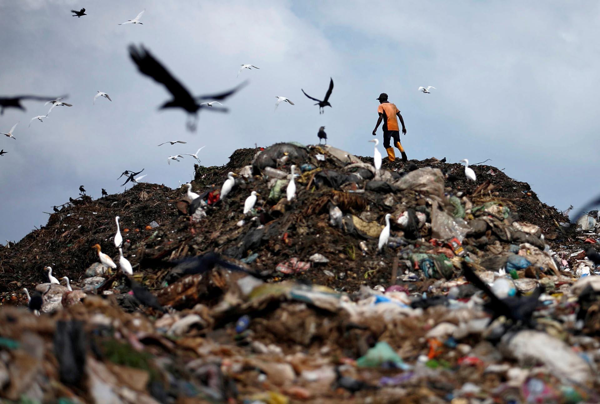 Un hombre recoge plástico para reciclar en un vertedero de basura en Colombo, Sri Lanka
