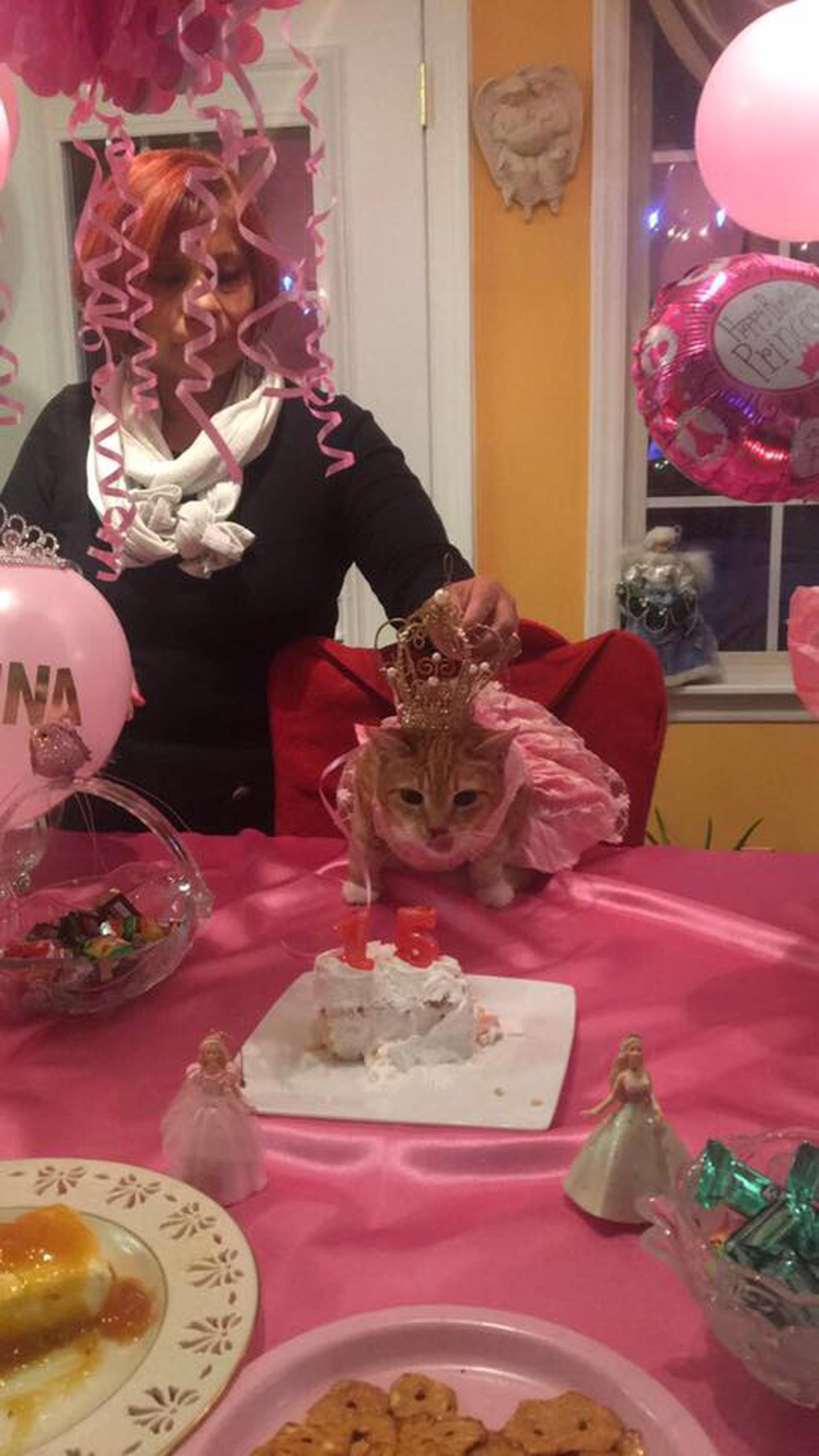 El festejo llevó un año de planeamiento con el fin de que todo salga como se esperaba (Facebook Quinceañera Cat)