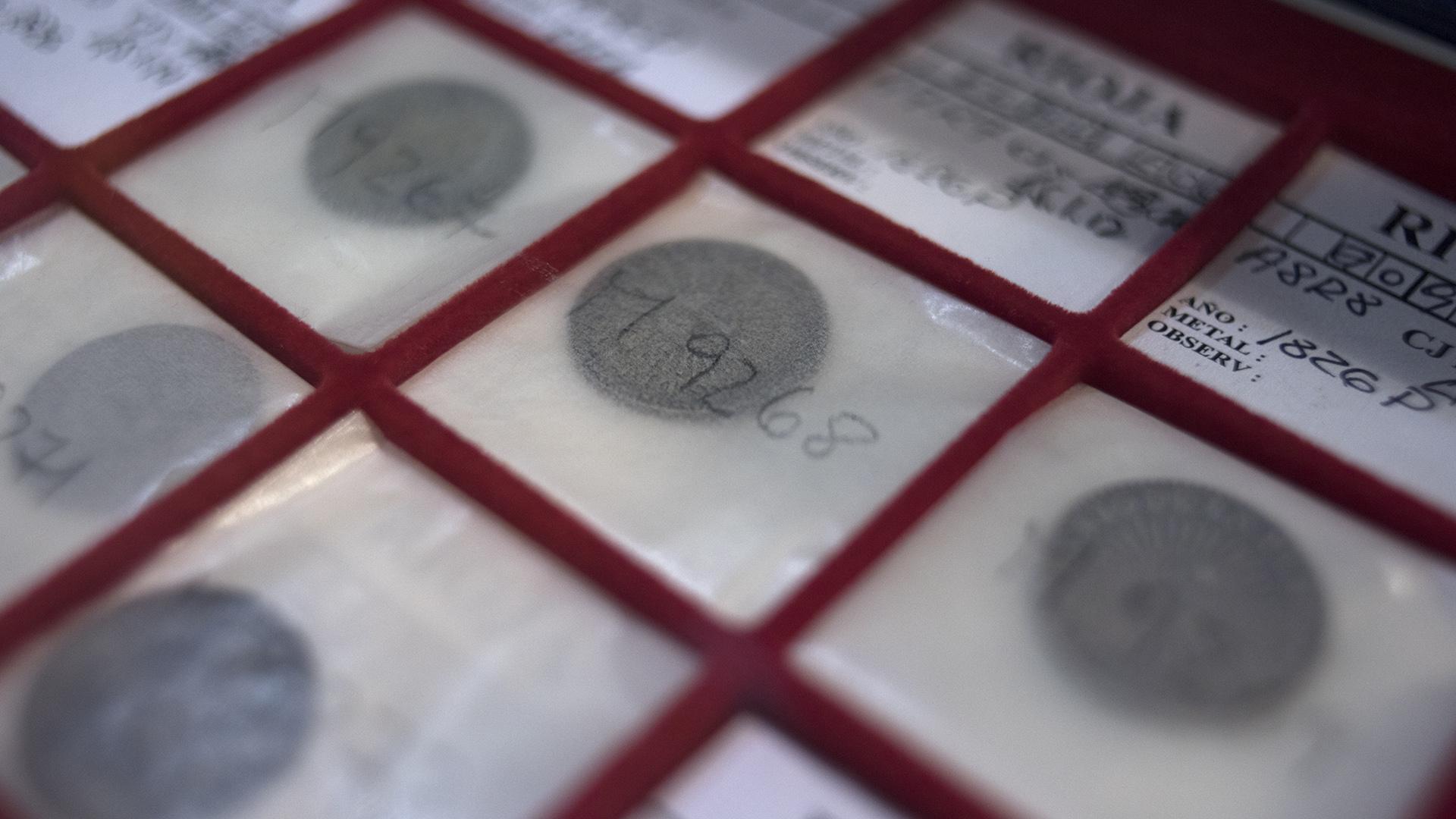 El papel en el que se guardan las monedas se llama Eco Botánico (Adrián Escandar)