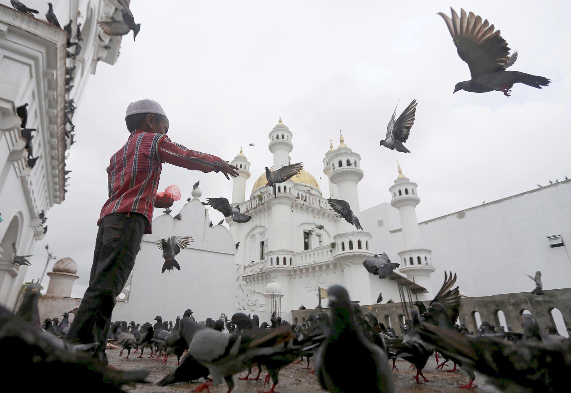 Un niño musulmán alimenta a las palomas después de las oraciones del viernes durante el mes sagrado del Ramadán en una mezquita en Colombo, Sri Lanka