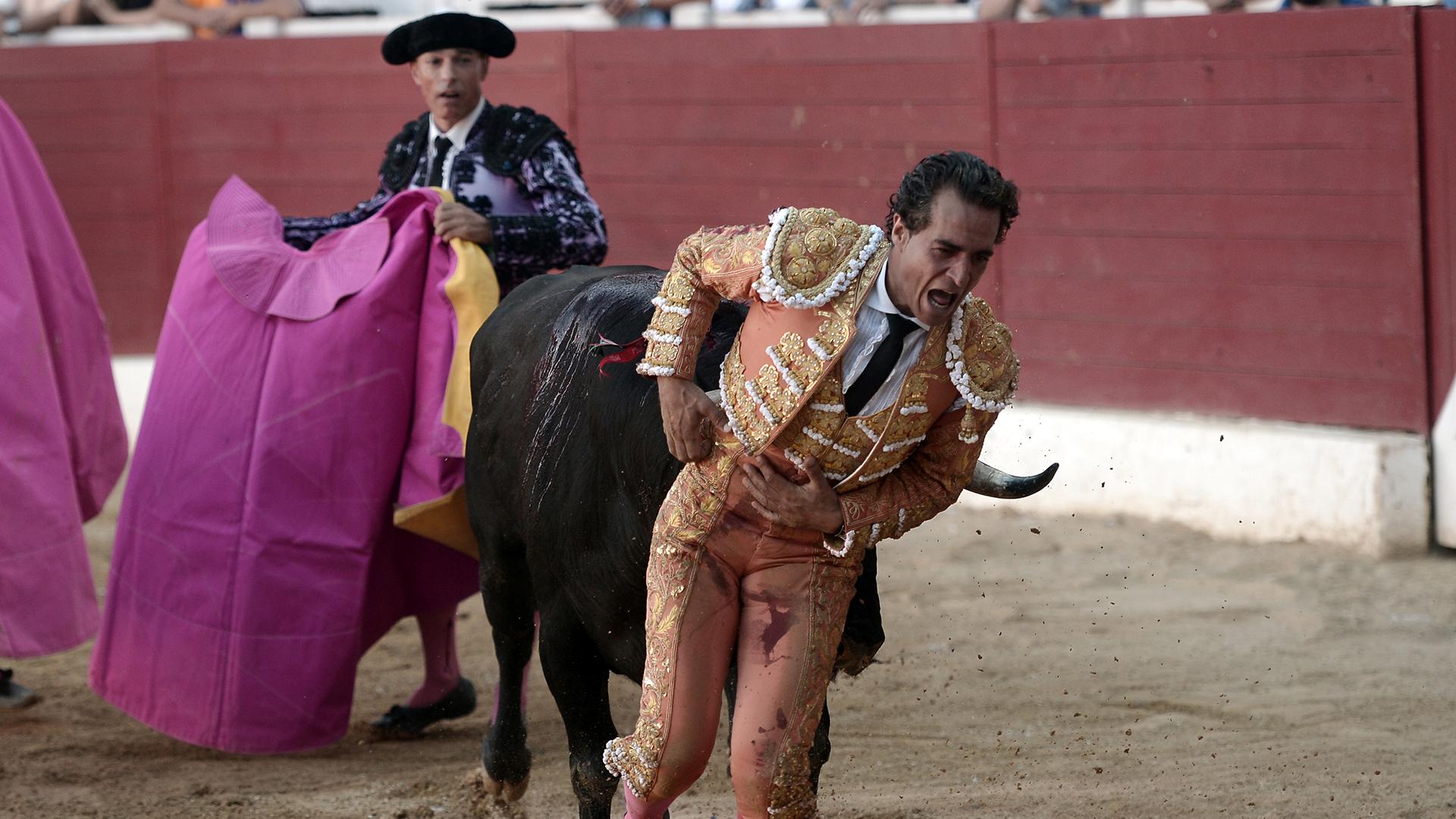 El famoso torero español Iván Fandiño murió tras recibir una cornada en un pulmón durante una corrida en Aire sur Adour, sur de Francia